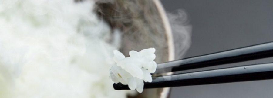 新之助の販売 新米のおいしい炊き方 新潟県のブランド米