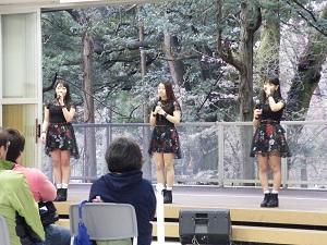 弥彦桜まつり2017 ケミカルリアクション ライブ 写真