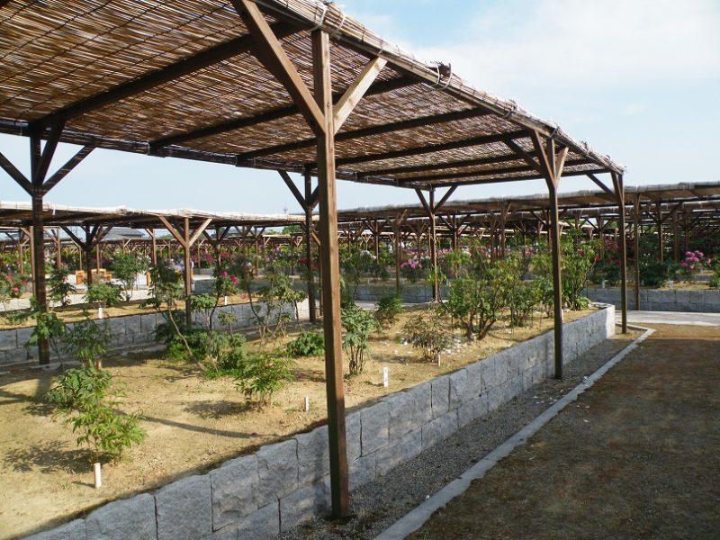新潟県弥彦村にある牡丹園の場所はどこ?