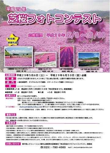 芝桜フォトコンテスト 平成29年 応募期間 詳細