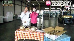五泉市の里芋 帛乙女 出荷 イベント ナマトク