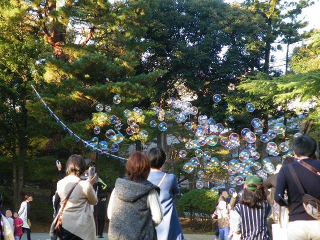 弥彦公園もみじ谷 シャボン玉 紅葉がきれい 2017年 駐車場がないほど激混み