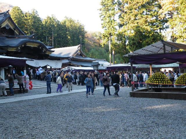 弥彦神社 菊祭り 2017年 写真