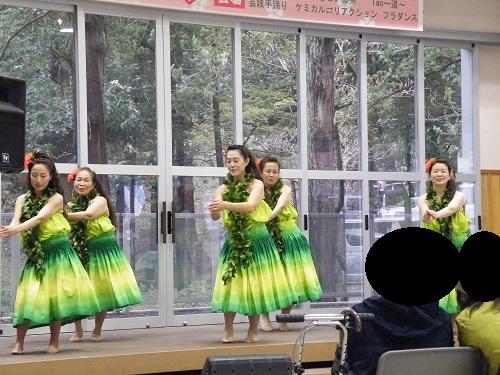 2018年弥彦村の春の祭り 桜祭りの様子 画像・写真