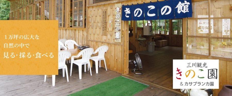 三川観光きのこ園 きのこ狩り(新潟・阿賀町)NGT48 にいがったフレンド