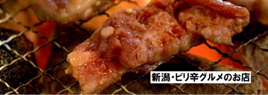 ピリ辛グルメ(新潟のお店)肉・麺・チーズタッカルビ・丼