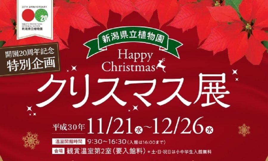 クリスマス展・新潟県立植物園 サンタクロース・イベント開催日時・料金
