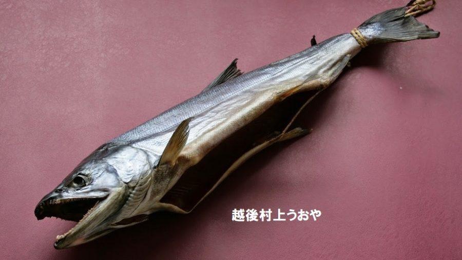 新潟県村上市にある老舗・越後村上うおや「塩引き鮭」八代目・上村八恵子さん