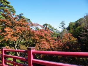 弥彦公園もみじ谷 観月橋からの紅葉 2018年11月3日撮影
