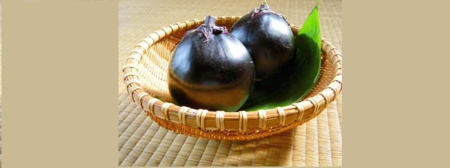 青空レストラン新潟県糸魚川市ナス・越の丸茄子レシピ