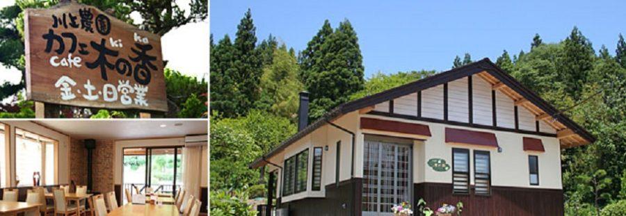 えごま農家カフェ木の香 えごま米粉パスタやえごまスイーツが人気 新潟県五泉市