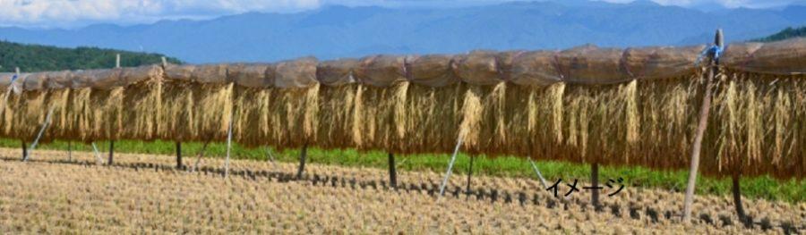 人生の楽園で紹介の新潟県胎内市平木田の「はさがけ米」おむすび食堂 農家レストラン ロッサビエント