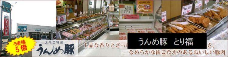 燕市吉田ソウルフードの鶏肉のレモン和えのお店 うんめ豚 とり福 新潟県