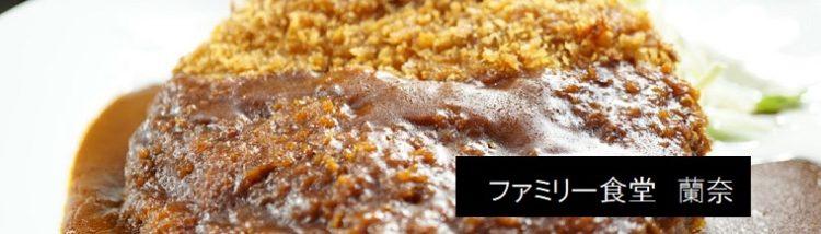 デミグラスチーズメンチカツ定食 ファミリー食堂 蘭奈 新潟県魚沼市