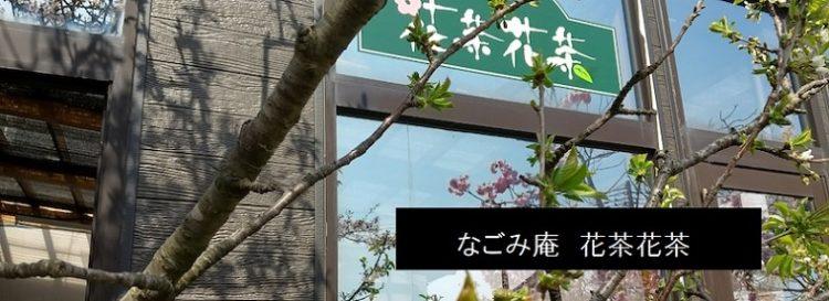西蒲区安尻のお花屋とカフェ ランチ・ハーブティー  なごみ庵 花茶花茶 新潟市