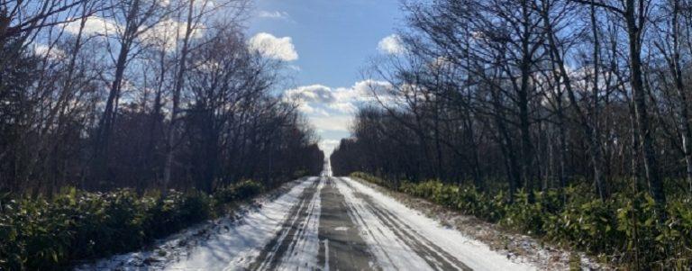 新潟県 雪の道路状況をライブカメラで見る