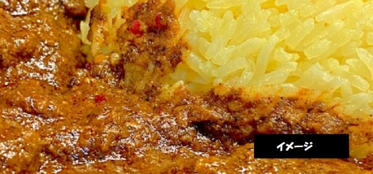 SPICY Curry &Food M85 本日のカレー 異なるスパイスをブレンドした本格カレー 新潟市中央区西堀通
