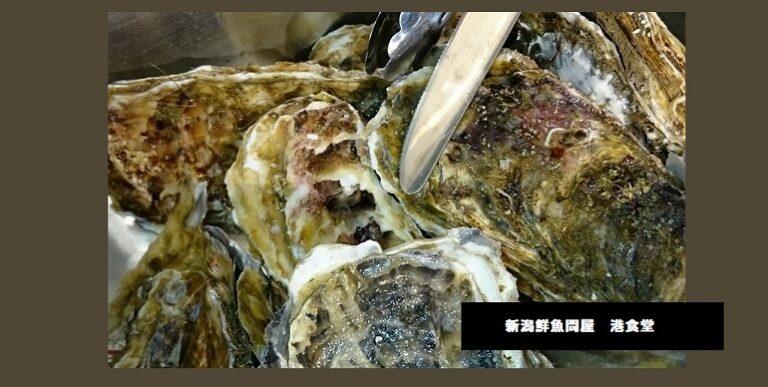 牡蠣のガンガン焼き デカイ!鮪中落ち定食 新潟鮮魚問屋 港食堂 新潟市中央区万代島