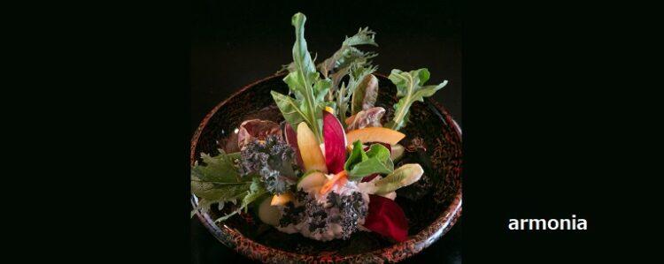 まるで生花のように美しいサラダと自家製手打ち麺のパスタ armonia 新潟市中央区西堀通