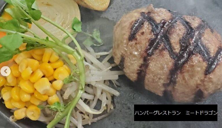 五泉市のハンバーグ店 ハンバーグレストラン ミートドラゴン 新潟県
