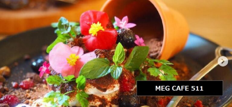 SNS映えするまるで鉢植えのお花も食べれるスイーツ MEG CAFE 511 新潟県見附市新幸町