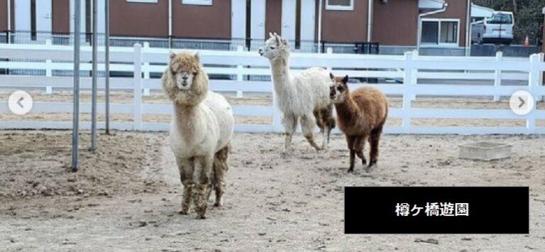 新潟県胎内市にある動物園・遊園地 お出かけスポット