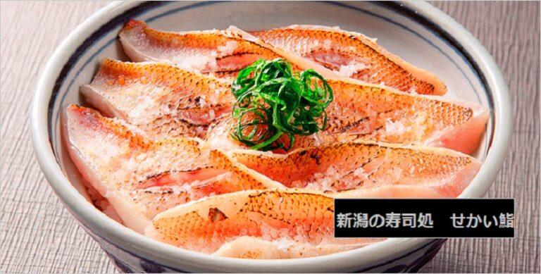 せっかくグルメで紹介された新潟県の寿司屋 のどぐろ炙り丼 新潟市中央区沼垂東