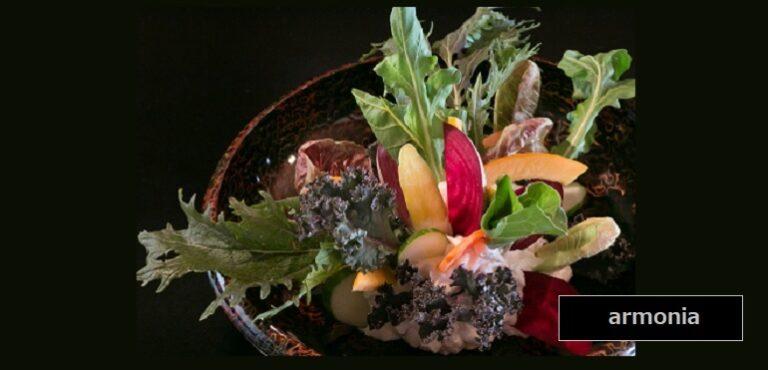 新潟県産オーガニック野菜を剣山に見立てたサラダ アルモニア 新潟市中央区西堀前通